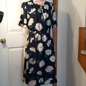 Sweet ladies dress ann taylor loft.14
